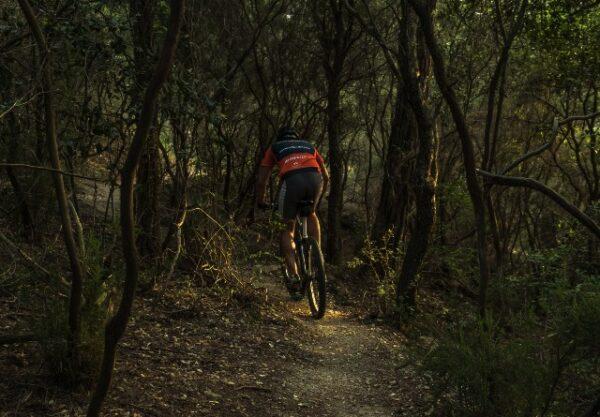 Crossen door de bossen: de 5 mooiste mountainbikeroutes